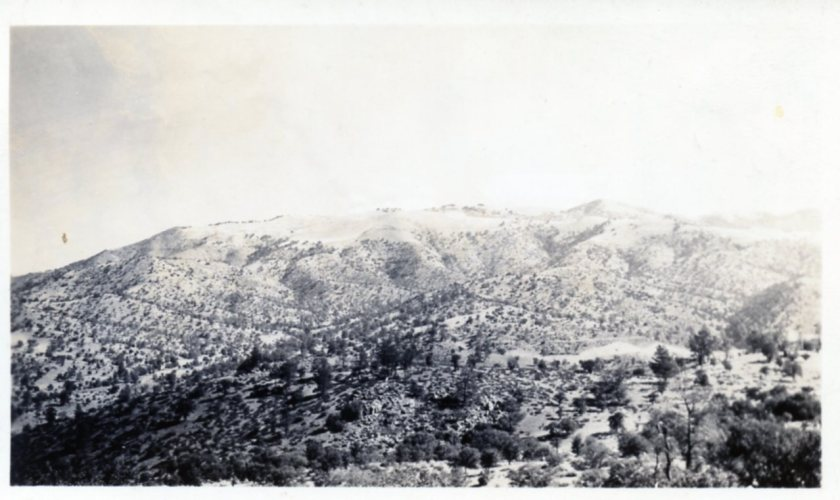 Mtn. View from California Maneuvers 1942