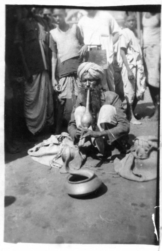 Snake Charmer in India