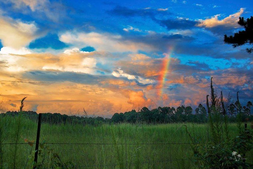 end of the rainbow--brian dumas