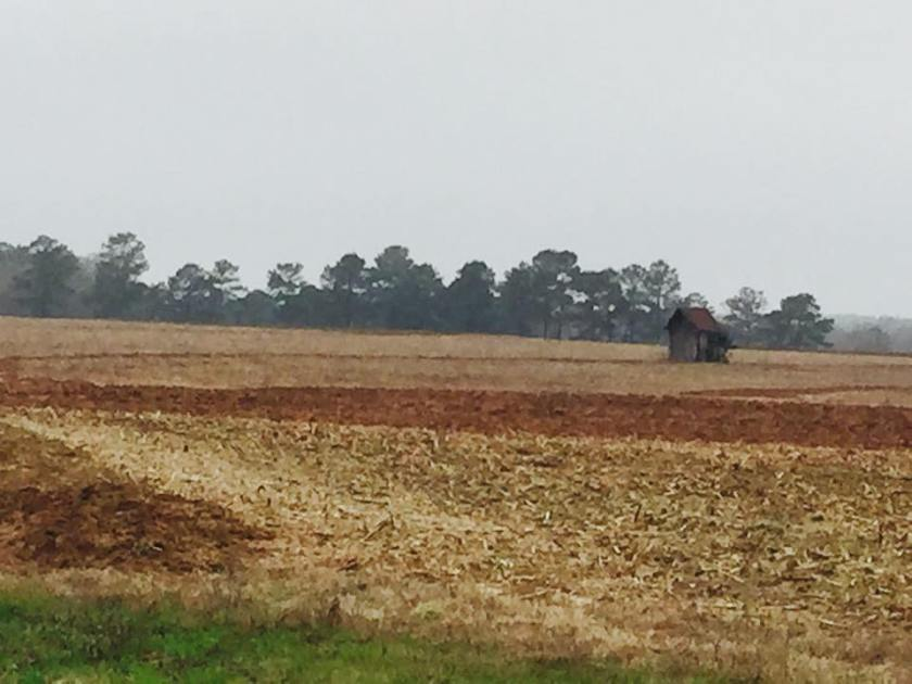 lonely shed in field