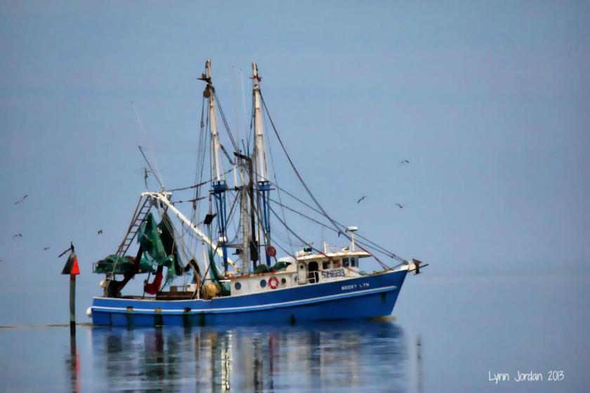 shrimp boat in action
