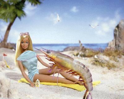 shrimp on the barbie