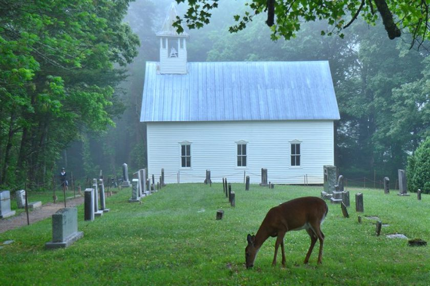 cades cove am jim bennett