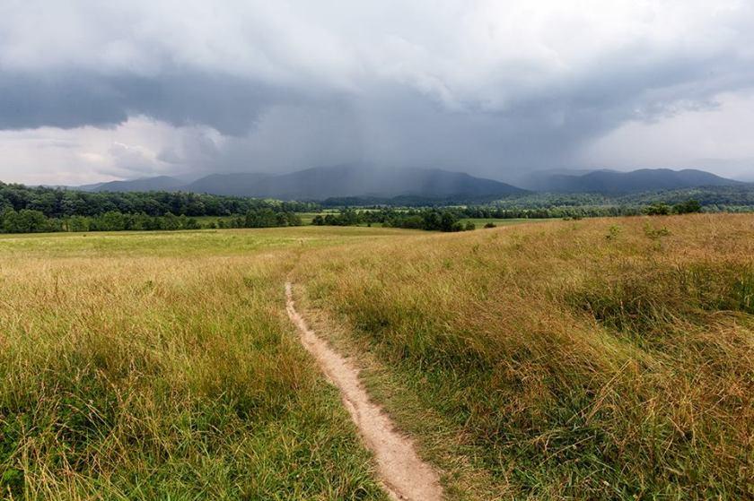stormy path danielle austen