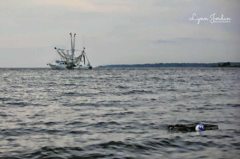 southern heir crab trap