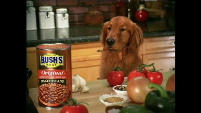 bushs-best-bushs-baked-beans-featuring-jay-bush-large-5
