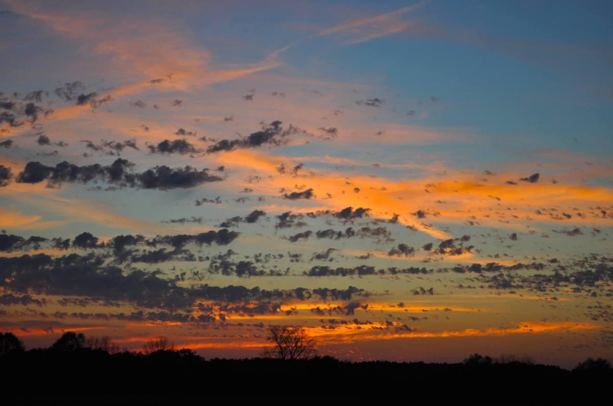 Cloud Flock #clouds#sunsets