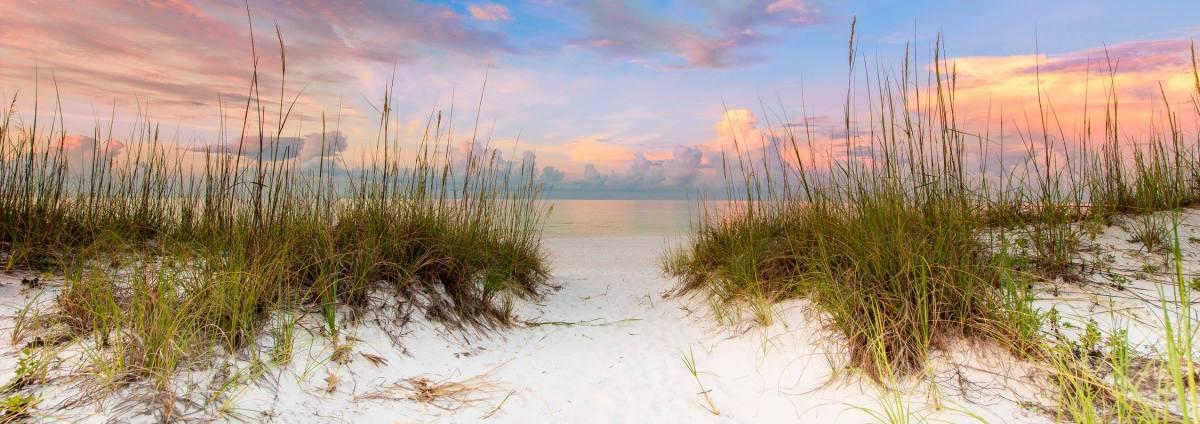 Beach Sunrise Surprise